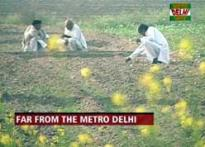 Poll picture from Delhi's hinterland | <a href='http://ibnlive.in.com/blogs/2205/contest/form.html'>Blog now</a>
