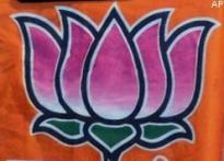 BJP's Babbar defeats daughter-in-law in Delhi polls