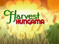 Harvest Hungama: India celebrates the harvest season