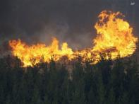 130 dead, Australian fire zone declared crime scene