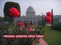 Delhi throws open Mughal Garden to public