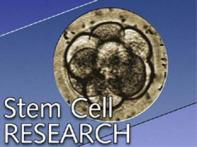 Obama gives green signal to stem cell research