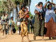 Refugee tragedy grows in Lanka; UN cries out for help