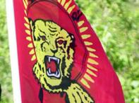 8 LTTE rebels killed as Lanka marks victory day