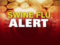 First swine flu case in Kerala, total increases to 98