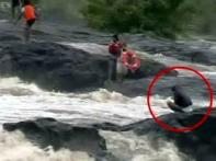Watch: Pune man rescued from raging river
