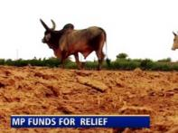 Govt wants MPLAD funds to be used for drought