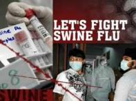 Let's fight swine flu: Myths vs facts