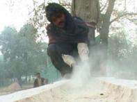 SC stays Mayawati's Noida park construction