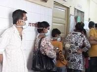 India's swine flu toll 730; over 22,000 affected