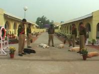 CISF recruits more dogs to improve security