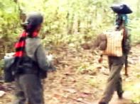 Maoists release kidnapped school headmaster