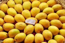 How to spot artificially ripened mangoes