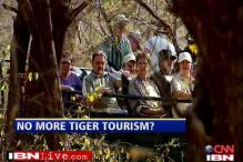 Are tourists good or bad for tigers?