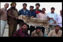 Man saves tigers by reforming poachers