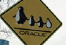 Oracle sues Google over Android