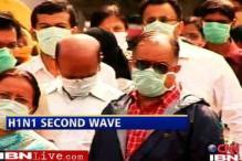 AP govt goes all out to battle swine flu