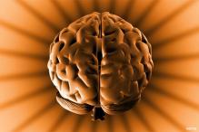 Human brain picks a new word within 15 mins
