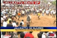 Tamil Nadu: 35 injured during Jallikattu festival
