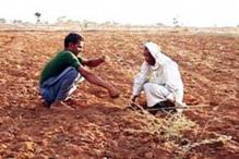 Agri Min pitches for crop loan at 3% in Budget 2012