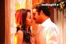 No competition for 'Dammu'
