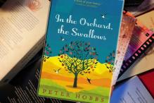 'In the orchard...' a story of beauty, love and pain