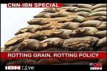 Haryana: Grain rots while poor starve