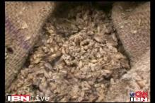 Rajasthan: Food grain worth Rs 2 cr left to rot