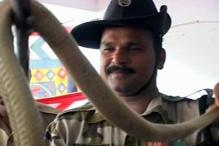 800 snakes rescued in Hyderabad in 2012
