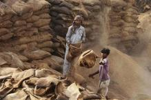 As crops rot, millions go hungry in India