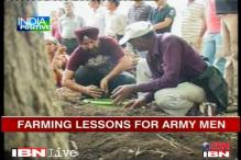 Jaipur: Retired Army men turn organic farmers