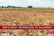 Gujarat draws up action plan after farmer suicide