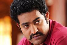 Junior NTR will enter active politics soon
