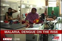Delhi: Monsoon sees rise in malaria, dengue cases
