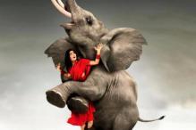 Telugu Review: 'Avunu' neither scares nor entertains