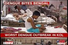 Kolkata faces dengue outbreak, govt apathetic