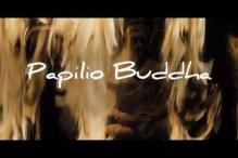 Makers of 'Papilio Buddha' move Censor tribunal