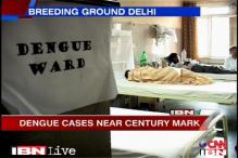 Dengue back to haunt Delhi, 98 cases confirmed