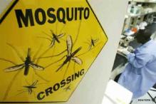 Older drug Chloroquine found effective against malaria
