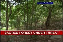Haryana govt's masterplans threaten Aravalli forest