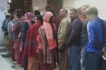 Record 75 per cent voting in Himachal Pradesh