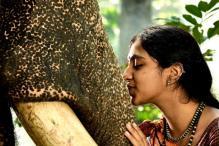 Vikram Prabhu stars in Prabhu Solomon's next