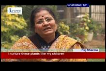 Ghaziabad: 60-year-old plants 4 lakh trees in 46 years