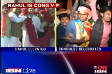Congress celebrates Rahul Gandhi's elevation