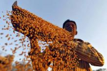 Cabinet likely to clear Food Bill on Tuesday