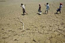 For drought-hit states, on-track monsoon may be too late