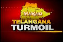 5 Telangana Cong MPs launch protest outside Parliament