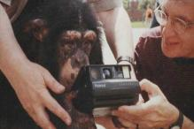 Photographs clicked by Russian chimp snapped up at $76,000 at auction