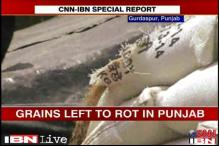 Wheat storage continues to be a problem in Punjab, Haryana