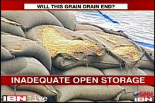 Haryana: 2.5 lakh wheat sacks left in the open to rot